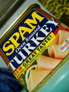 SpamTurkey