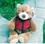 Captain Will Bear (small)