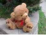 General Seeum Bear (small)