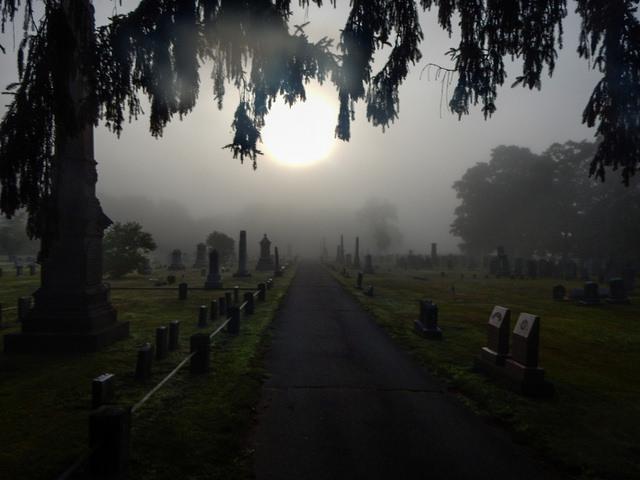 foggy-sunrise
