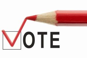 write-in-vote